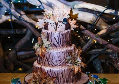 Silver Birch Wedding Cake perfect for Alnwick Tree House - 2018